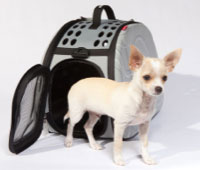 Pet Carrier - Transporter