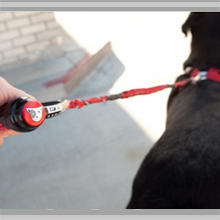 Large dog leashes category picture.