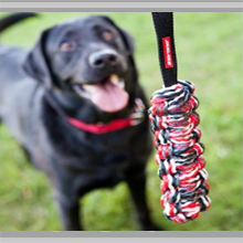 Large dog toys category picture.