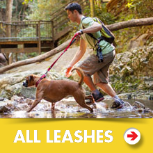 All Dog Leashes Category Image