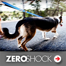 Dog zeroshock leashes category picture.