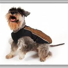 Small dog coats category picture.