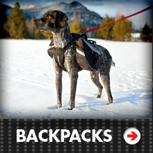 Dog Backpacks Category Picture