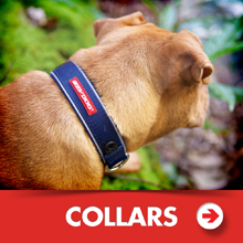 Dog collars category picture.