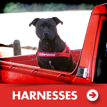 Dog harnesses category picture.